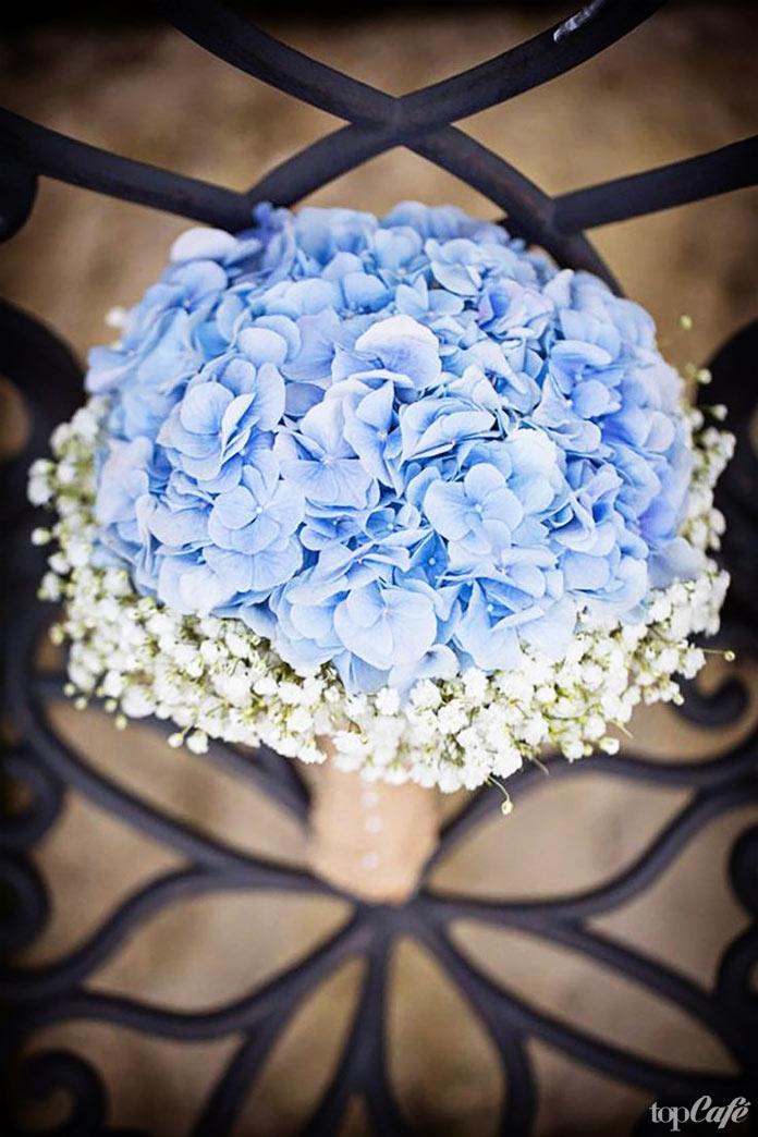 Шикартные свадебные цветы: Hydrangea