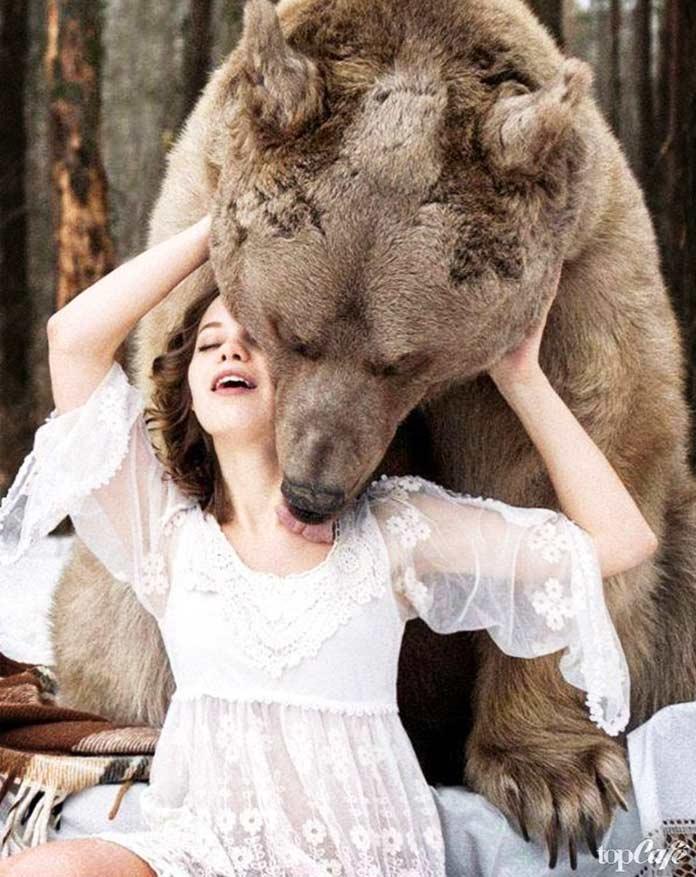 красивые фото медведей