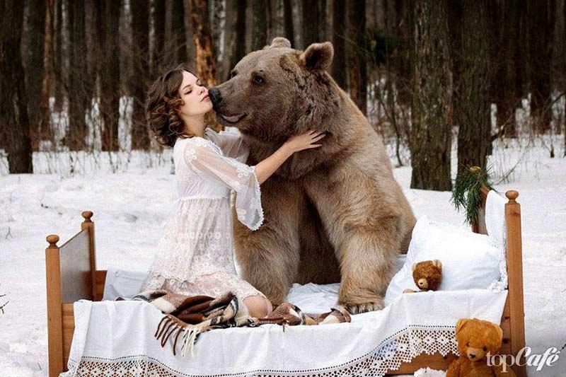 Удивительные фотографии медведей