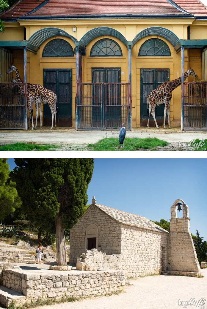 Достопримечательности Сплита: Зоопарк