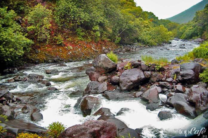 Маррамбиджи. Самые длинные реки Австралии