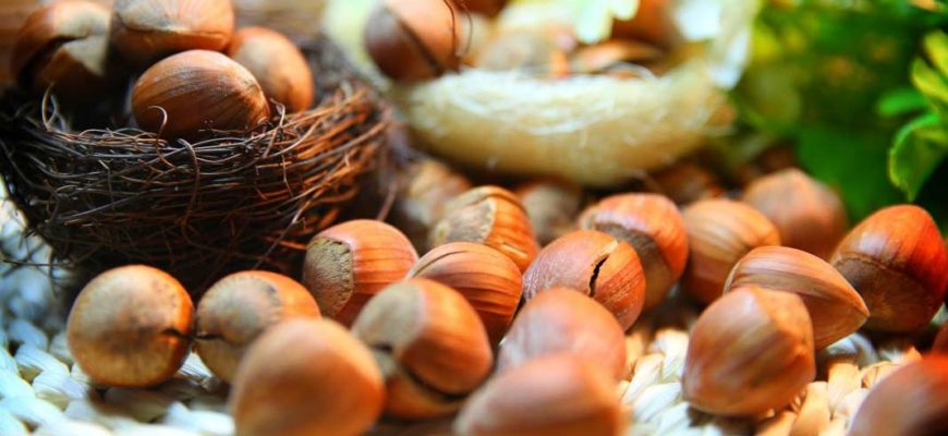 Самые дорогие орехи