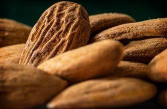 Калорийные орехи орехи. CC0