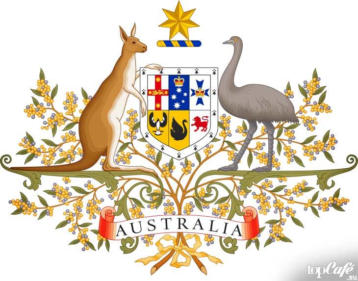 Символический герб. CC0