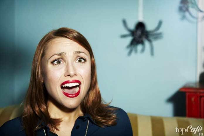 Боязнь пауков инаука