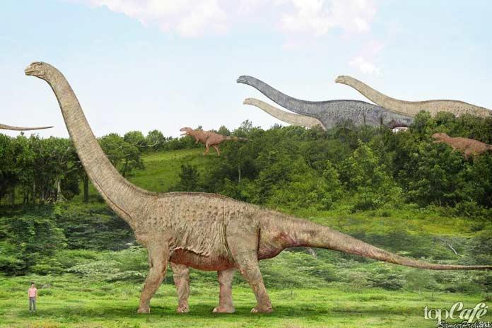 Факты про Аргентину: Древнейшие ископаемые млекопитающие