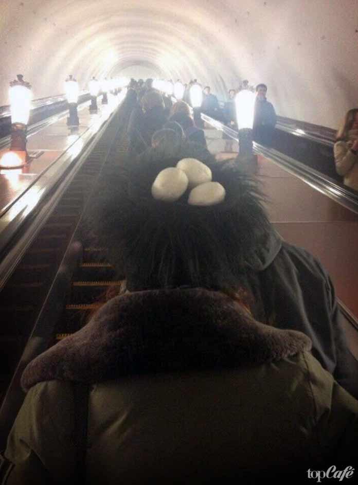 Женщина с яйцами на голове