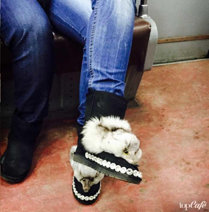 Фотографии женщин в метро: крутая обувь