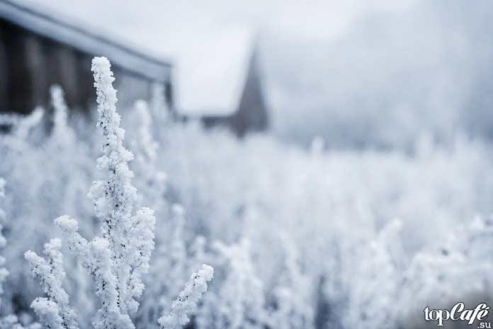 ТОП-12 самых холодных стран мира