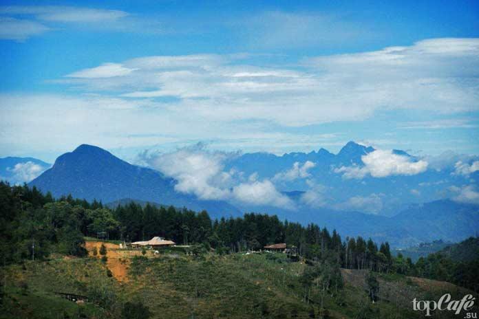Главные достопримечательности Колумбии: Национальный природный парк Лос Невадос