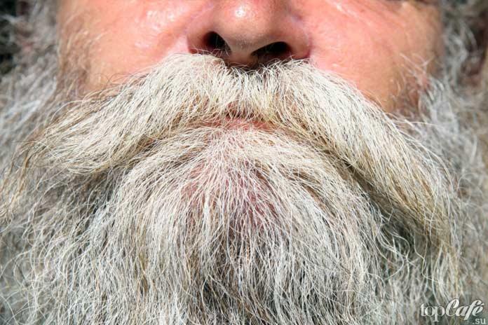 Польза бороды