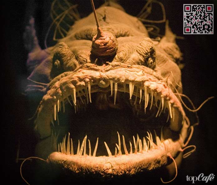 Страшная Рыба-убийца