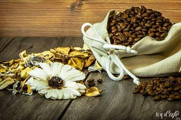 Кофе впервые попал в Европу в XVI столетии