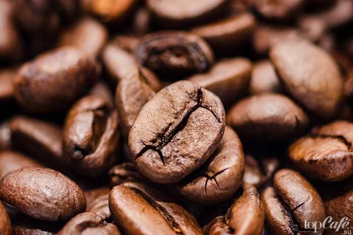 Неизвестно,кто первым открыл миру кофе