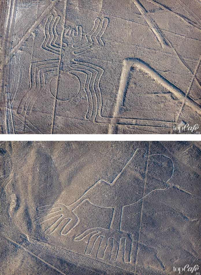 Перу Пустыня Наска