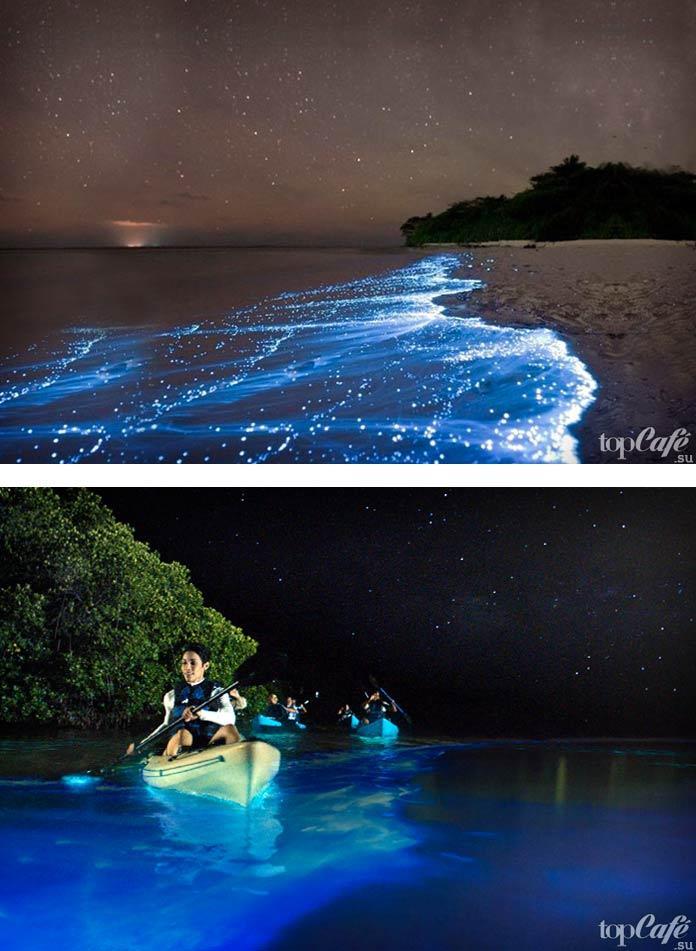 Неповторимый Биолюминесцентный пляж