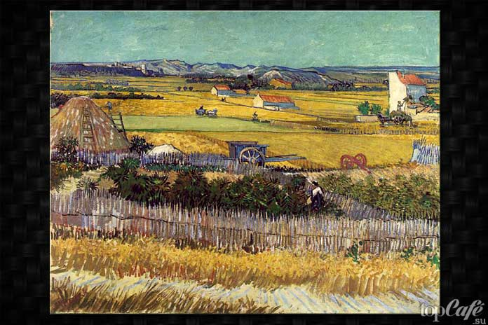 Жатва Ван Гог