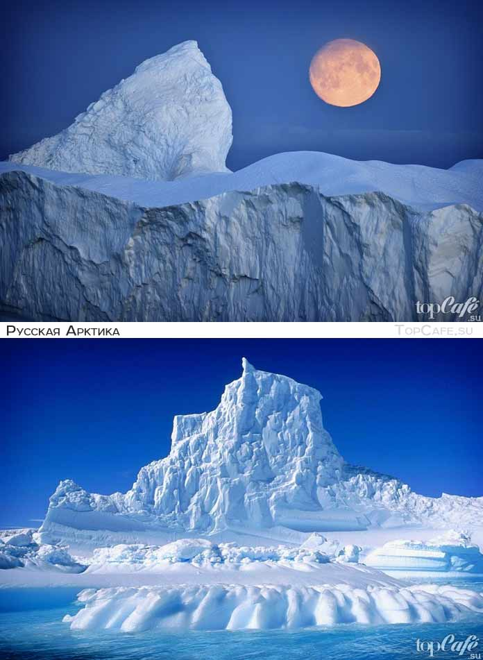 Арктика (CC0)