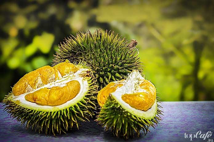 Список самых необычных фруктов: Дуриан CC0