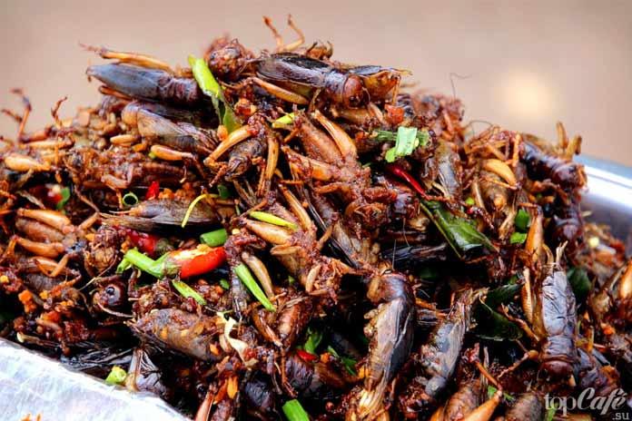 Факты о тараканах: Тараканы в кулинарии. СС0