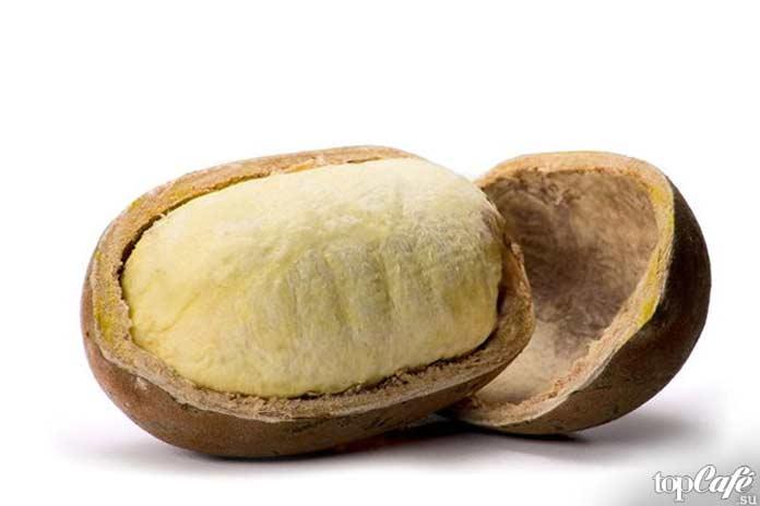 Список самых необычных фруктов: Cupuaçu