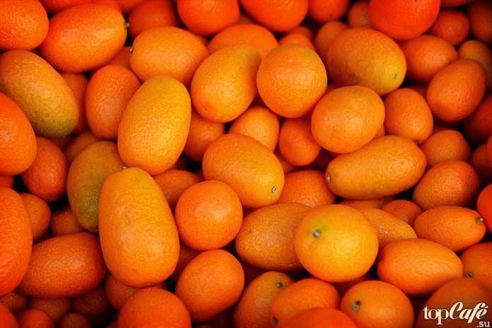 Kumquat. CC0