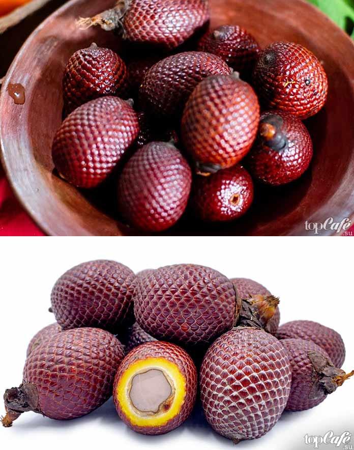 Список самых необычных фруктов: Мавриция извилистая