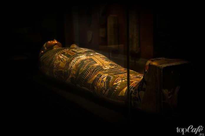 Косметология в мумифицировании