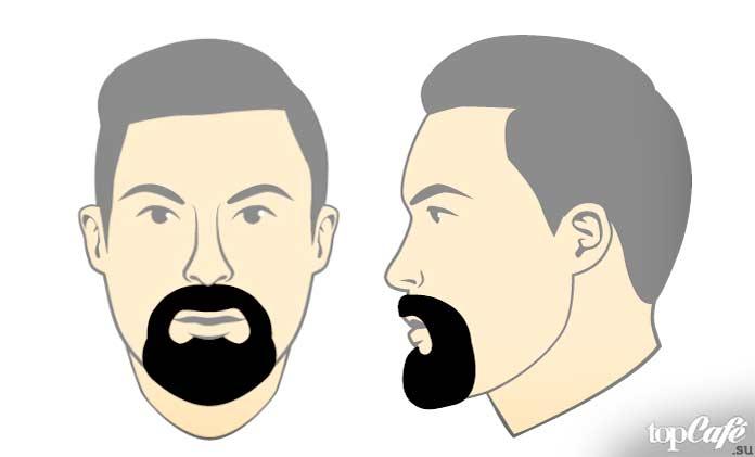 Круговая борода