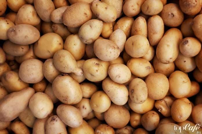 Факты об инках: Картофель. CC0