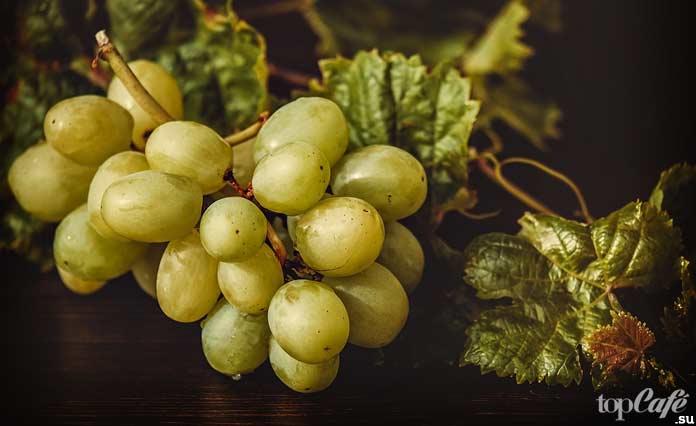 Масло виноградных косточек. CC0