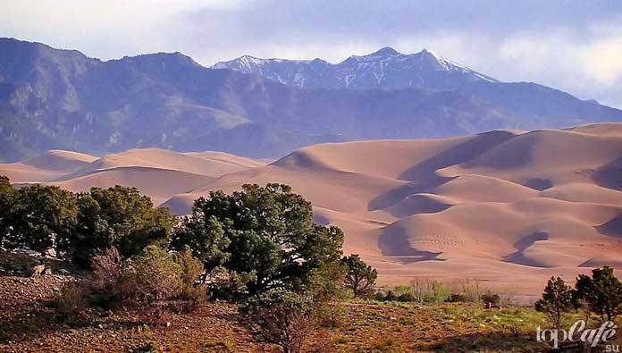Великие песчаные дюны. CC0