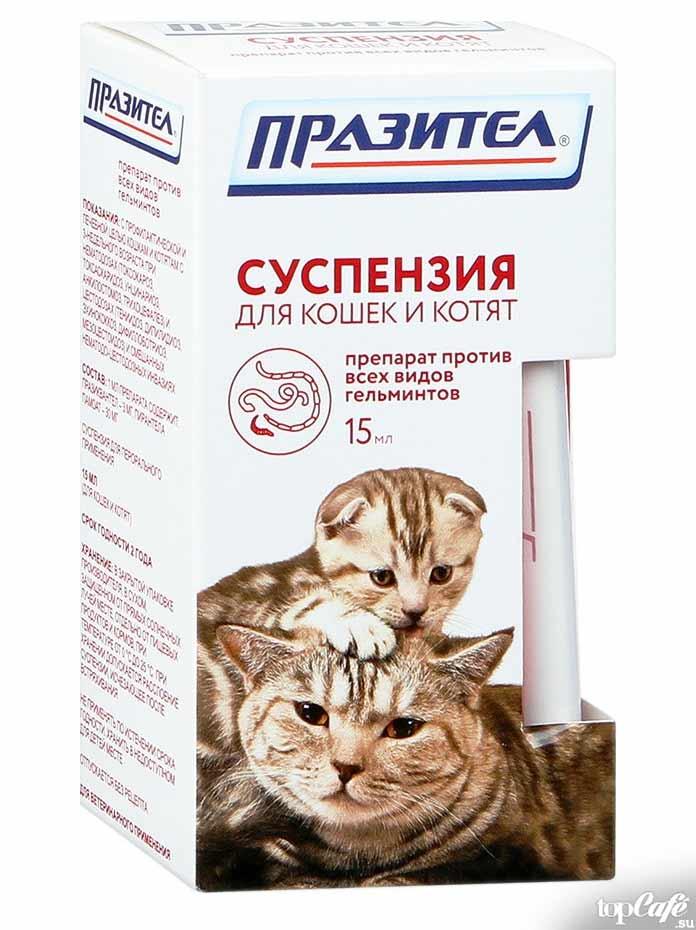 Средства от глистов для кошек: Празител