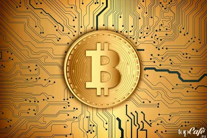 Удивительные профессии будущего: Криптовалютный гуру. CC0