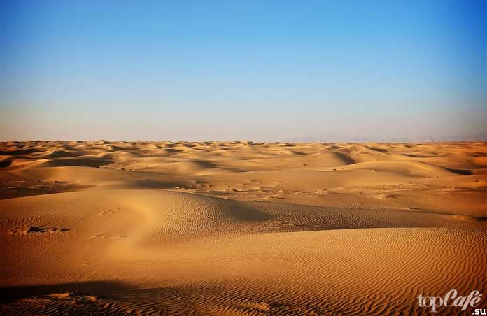 Пустыня. CC0