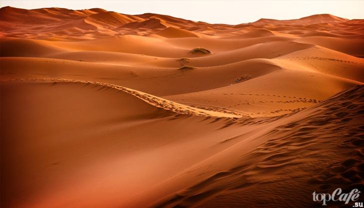 Климат в Сахаре. CC0