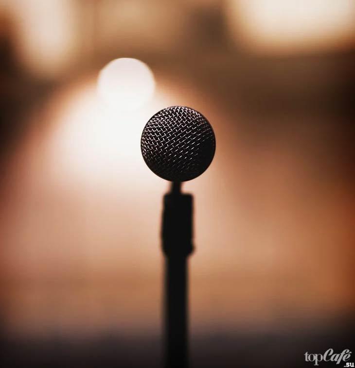 Микрофон. CC0
