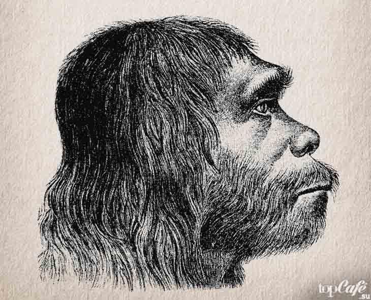 Неандерталец. CC0