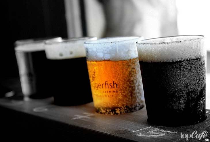 Страны-лидеры по производству пива. CC0